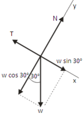 Equilibrium of bodies connected by cord and pulley – application of Newton's first law problems and solutions 2